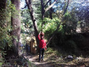 Gathering Water. In this picture I am carrying water from the well up to the house. This is a daily chore as you can't use the running water from the pipes for cooking or drinking. Every day, and sometime multiple times per day, I would walk down the hill to the well and gather water for drinking and cooking. This photo was taken sometime in November of 2016. From WSCU grad student Brandon McNamara's 2017-2018 project developing mountain resilience curriculum with Ajay Rastogi from the Foundation for the Contemplation of Nature in Majkhali, India.